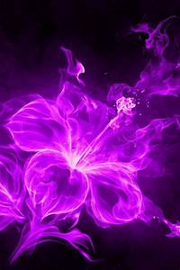 iphone wallpapers background lock screens pink fire Flower ...