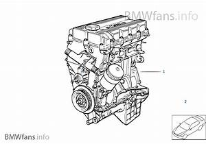 Bmw E36 Diagram