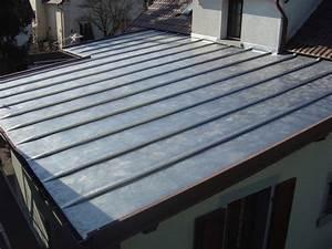 Plaque Ondulée Pour Toiture : zinc pour toiture rev tements modernes du toit ~ Premium-room.com Idées de Décoration