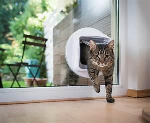 Katzenklappe Für Fenster : katzenklappe im fenster mit diesen kosten ist zu rechnen ~ Eleganceandgraceweddings.com Haus und Dekorationen