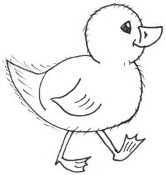 How to Draw Cute Baby Chick