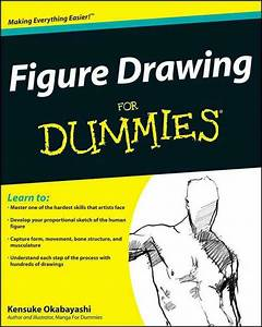 Figure Drawing For Dummies  A Systematic And Regional