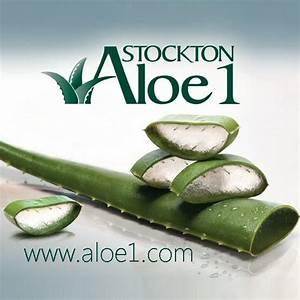Aloe Vera Ikea : die besten 25 aloe vera pflanze kaufen ideen auf ~ Preciouscoupons.com Idées de Décoration