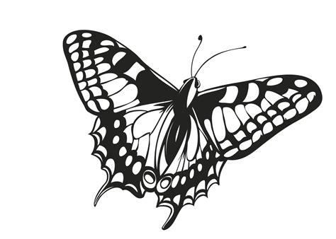 kleurplaten vlinders  gratis kleurplaten voor kinderen