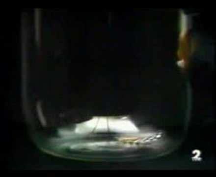 caida en el salon de física 01 caída libre en el vacío demostración