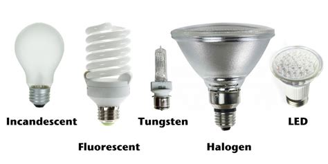 different types of light bulbs different types of lighbulbs thinglink