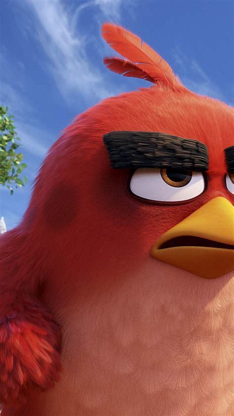 wallpaper angry birds  red  animation movies