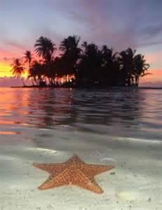 Starfish Island Panama