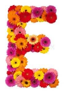 sunflower corsage letter e flower alphabet isolated on white background