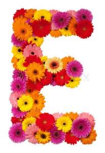 Alphabet Letter E with Flowers