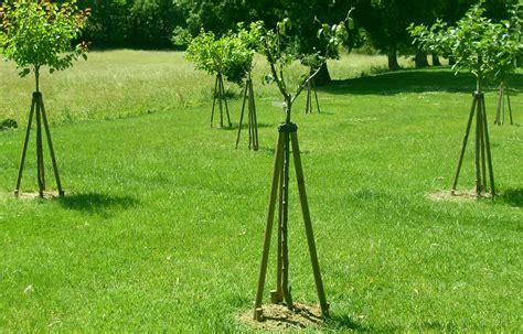 jardinerie plaisible agrader la terre en recueillir les