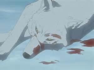 Kiba Wolf's Rain Death