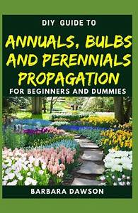Diy Guide To Annuals  Bulbs And Perennials Propagation