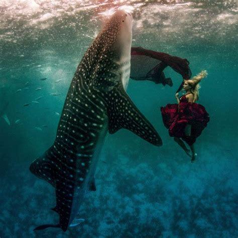 models swim  whale sharks   underwater fashion