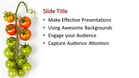 tomato powerpoint template  powerpoint templates