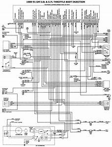 Pin By Dean Hardiman On Auto Wiring  Simple To Use