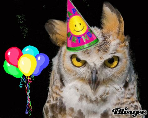 Happy Birthday Owl Images Birthday Owl Picture 128543626 Blingee