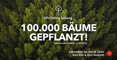 Sportpursuit Nachhaltigkeit Bei Neueste Nachrichten Trees Banner