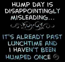 wedding wishes sayings hump day meme hump day is disappointingly picsmine