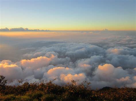 wisata puncak  negeri diatas awan lumajang