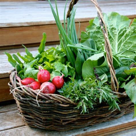 vegetable garden gift ideas christmas gardening gifts for the vegetable grower