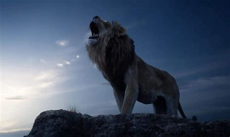 trailer   remake   lion king  officially