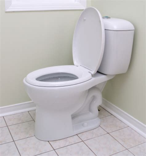 residential water closets urinals and bidets buildipedia