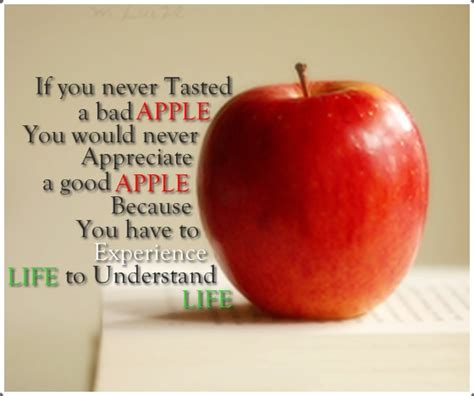 Apple Quote Aapl Quotes Gallery Wallpapersin4k Net
