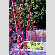 Debra Prinzing » Post » Got Twigs? Branch Out And Decorate