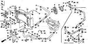 Honda Motorcycle 2003 Oem Parts Diagram For Radiator