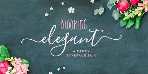 fontspring blooming elegant fonts  nicky laatz
