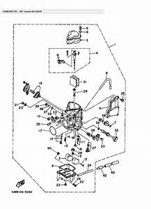 Wiring Diagram  35 Yamaha Big Bear 350 Wiring Diagram