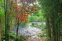 Graines D Agapanthe : faire un semis d agapanthe ~ Melissatoandfro.com Idées de Décoration