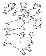 Pig Coloring Pigs Many Popular Coloring2print sketch template