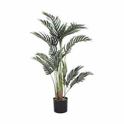 Palm Tree Tall Artificial Transparent Kmart Nz