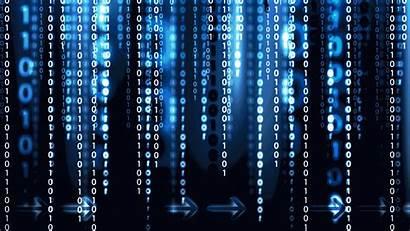Cybersecurity Identity Case Caulis Startup Study Brand