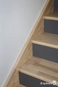 Contre Marche Deco : escalier 11 photos annab18 ~ Dallasstarsshop.com Idées de Décoration