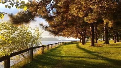 1440p Wallpapers Lawn Trees Lake Imgur Reddit