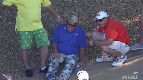 John Daly collapses, withdraws at PGA Tour Champions event ...