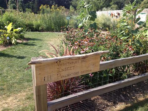 gardens where you can see vegetable herb gardens