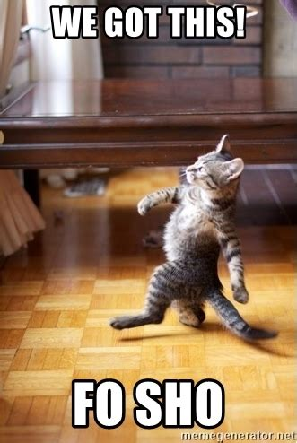 We Got This Meme - we got this fo sho walking cat meme generator