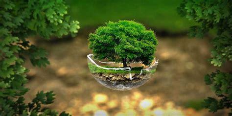 big environmental impact give