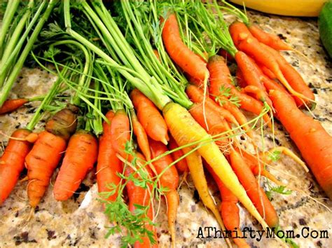 how to carrots from the garden how to carrots from the garden so they don t go
