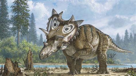 l int 233 ressante histoire de judith la nouvelle esp 232 ce de dinosaure