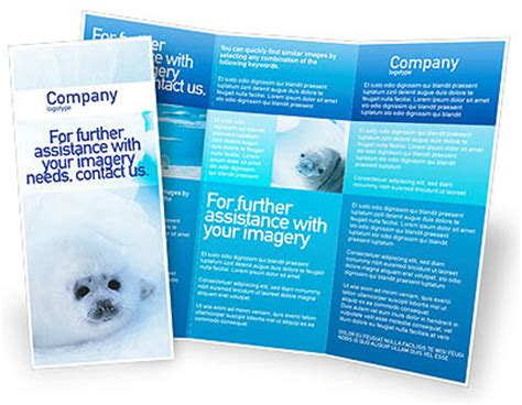 Free Brochure Templates Microsoft Word by Free Microsoft Word Brochure Templates