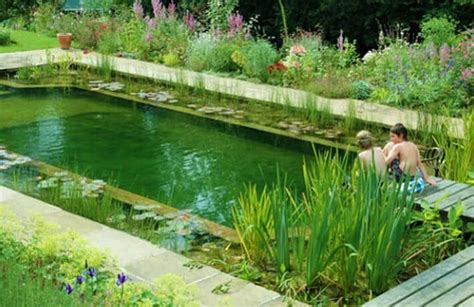 Swimming Pond : Natural Pools Or Swimming Ponds • Insteading