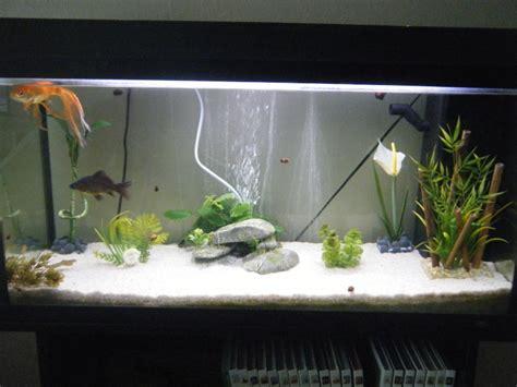 dans combien de litres vivent vos poissons rouges