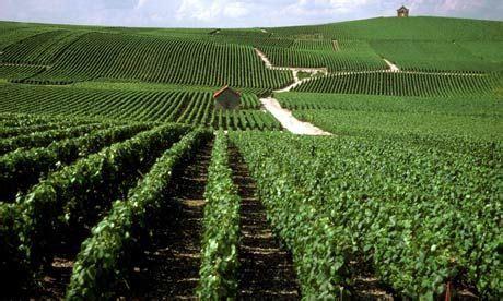 Champagne Wine Route Top 10 Guide フランス