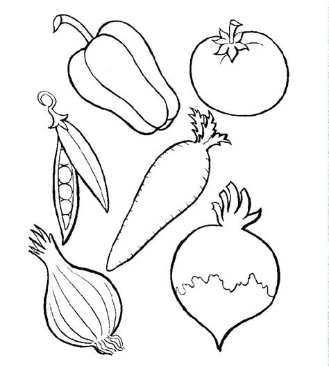 fruits  vegetables drawing  paintingvalleycom