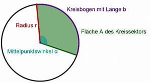 Radius Eines Kegels Berechnen : kreissektor mathe artikel ~ Themetempest.com Abrechnung